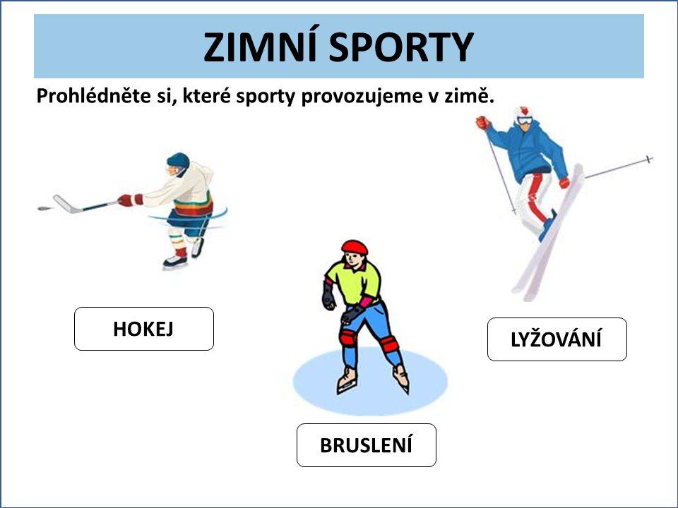 ZIMNÍ SPORTY HOKEJ LYŽOVÁNÍ BRUSLENÍ Prohlédněte si, které sporty provozujeme v zimě.
