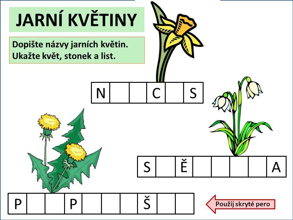PPŠNCSSĚA Dopište názvy jarních květin. Ukažte květ, stonek a list.