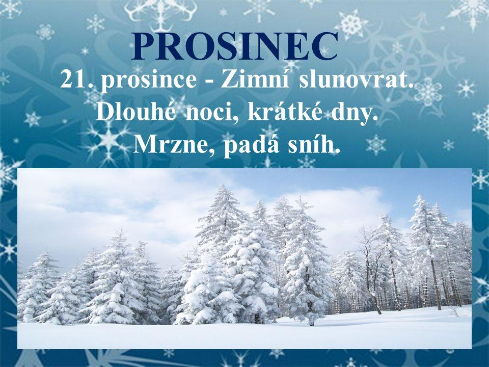 PROSINEC 21. prosince - Zimní slunovrat. Dlouhé noci, krátké dny. Mrzne, padá sníh.