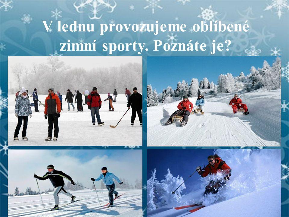 V lednu provozujeme oblíbené zimní sporty. Poznáte je?