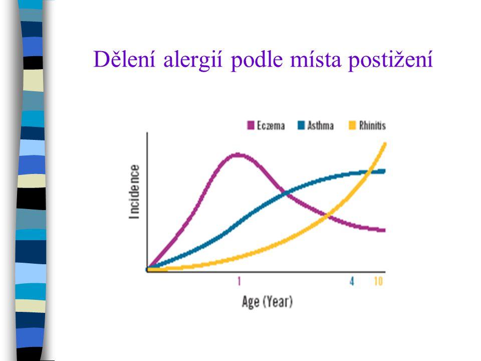 Dělení alergií podle místa postižení