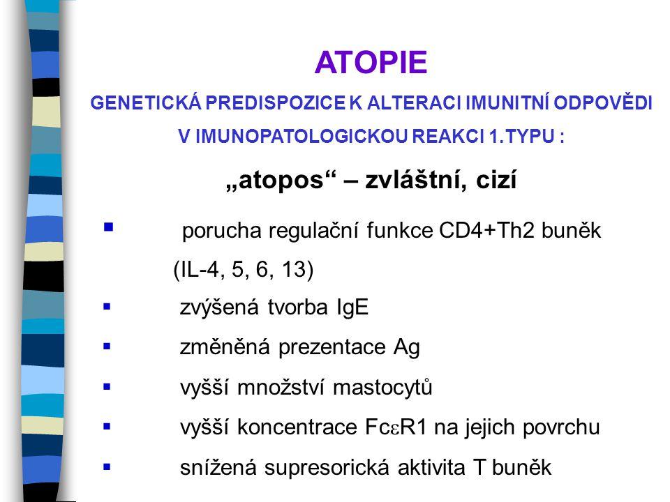 """GENETICKÁ PREDISPOZICE K ALTERACI IMUNITNÍ ODPOVĚDI V IMUNOPATOLOGICKOU REAKCI 1.TYPU : """"atopos – zvláštní, cizí  porucha regulační funkce CD4+Th2 buněk (IL-4, 5, 6, 13)  zvýšená tvorba IgE  změněná prezentace Ag  vyšší množství mastocytů  vyšší koncentrace Fc  R1 na jejich povrchu  snížená supresorická aktivita T buněk"""