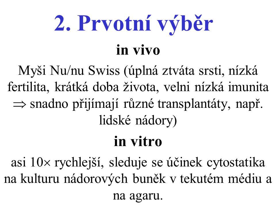 2. Prvotní výběr in vivo Myši Nu/nu Swiss (úplná ztváta srsti, nízká fertilita, krátká doba života, velni nízká imunita  snadno přijímají různé trans