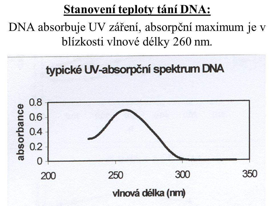 Stanovení teploty tání DNA: DNA absorbuje UV záření, absorpční maximum je v blízkosti vlnové délky 260 nm.