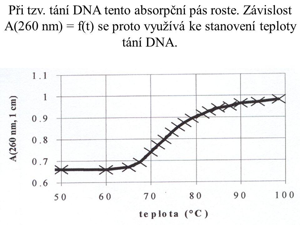 Při tzv. tání DNA tento absorpční pás roste.