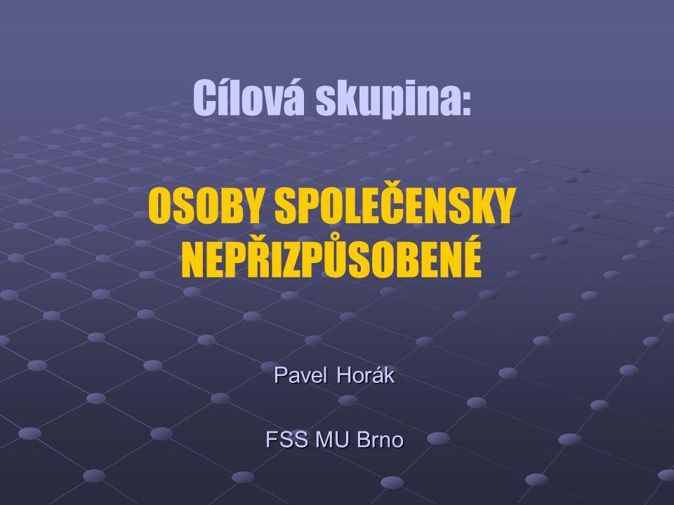 Cílová skupina: OSOBY SPOLEČENSKY NEPŘIZPŮSOBENÉ Pavel Horák FSS MU Brno