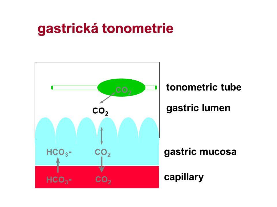 capillary gastric mucosa gastric lumen tonometric tube HCO 3 - CO 2