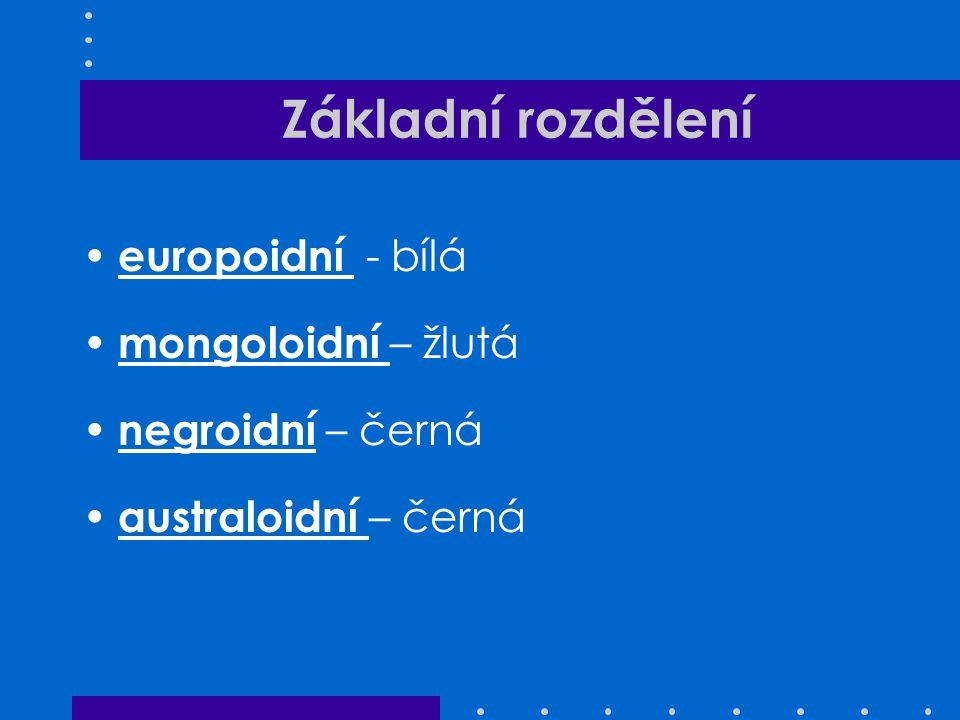Základní rozdělení europoidní - bílá mongoloidní – žlutá negroidní – černá australoidní – černá