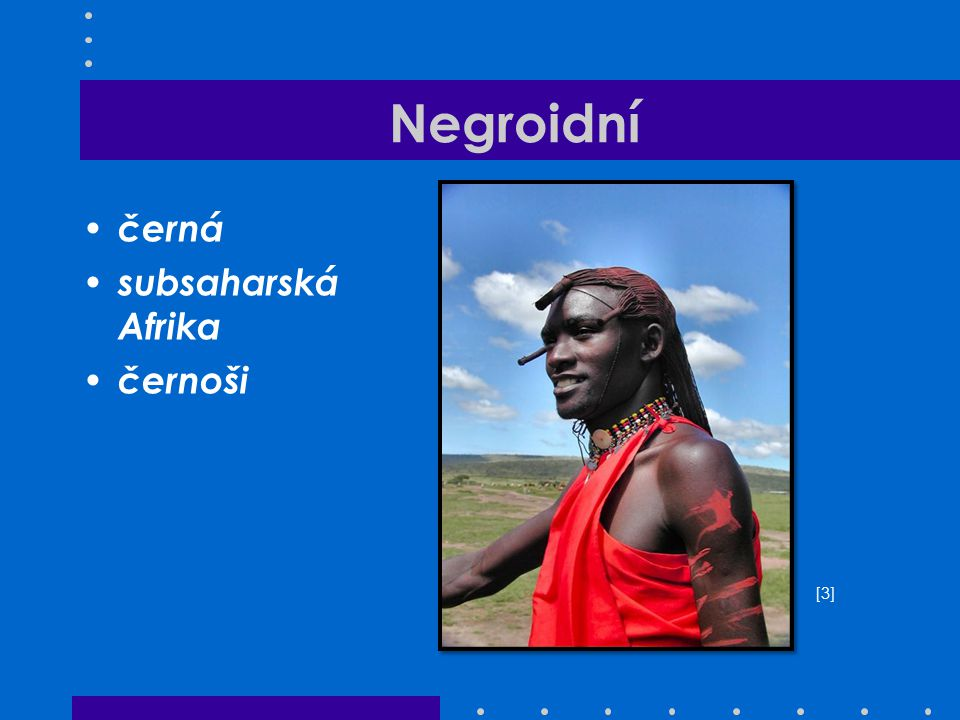 Negroidní černá subsaharská Afrika černoši [3][3]