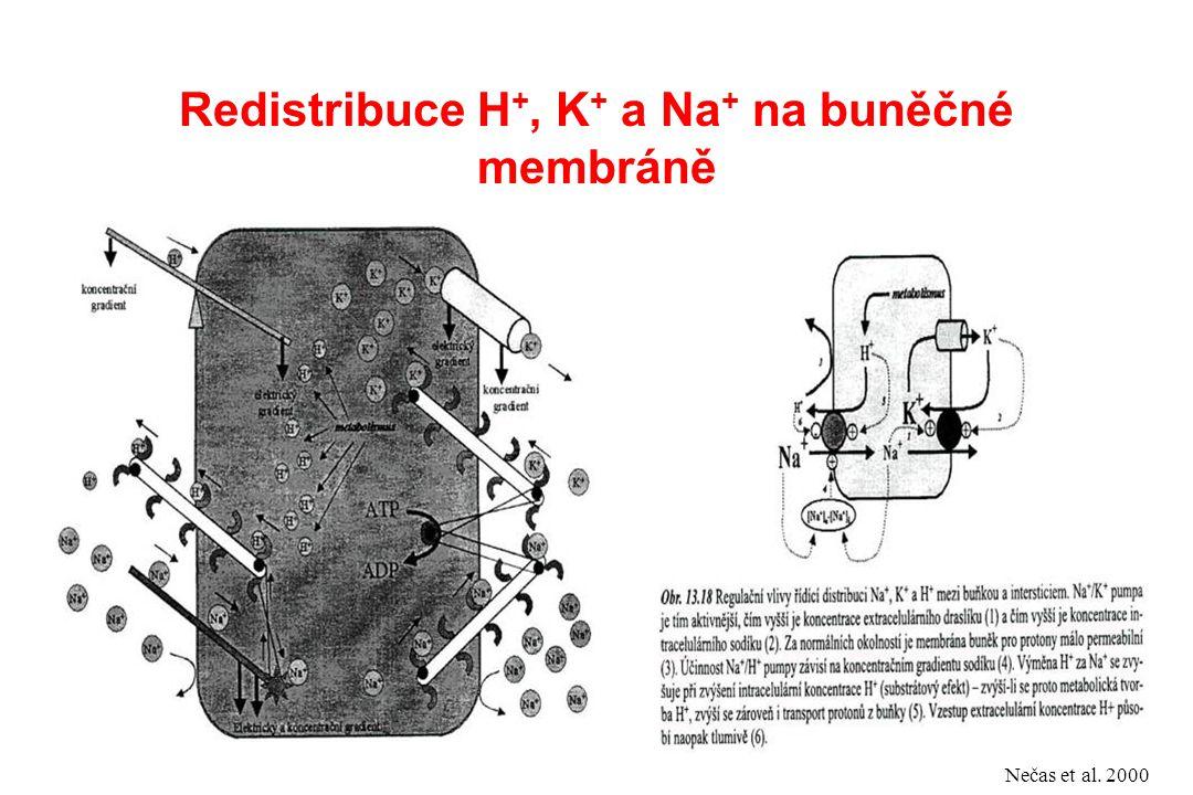 Redistribuce H +, K + a Na + na buněčné membráně Nečas et al. 2000