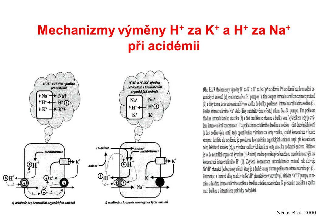 Mechanizmy výměny H + za K + a H + za Na + při acidémii Nečas et al. 2000