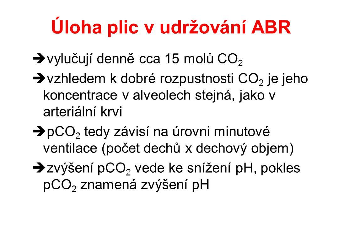 Úloha plic v udržování ABR  vylučují denně cca 15 molů CO 2  vzhledem k dobré rozpustnosti CO 2 je jeho koncentrace v alveolech stejná, jako v arter