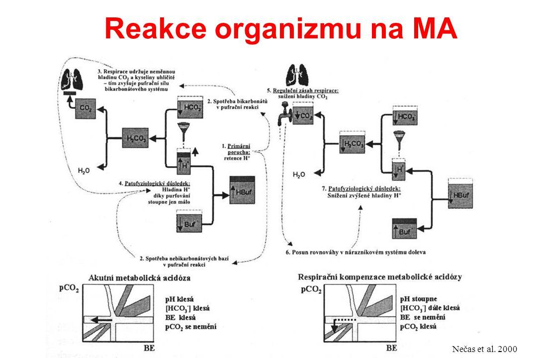 Reakce organizmu na MA Nečas et al. 2000