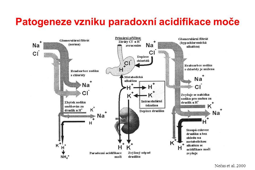 Patogeneze vzniku paradoxní acidifikace moče Nečas et al. 2000