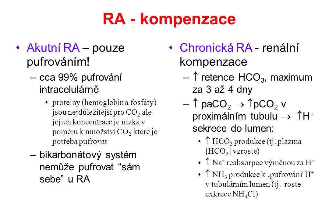 RA - kompenzace Akutní RA – pouze pufrováním! –cca 99% pufrování intracelulárně proteiny (hemoglobin a fosfáty) jsou nejdůležitější pro CO 2 ale jejic