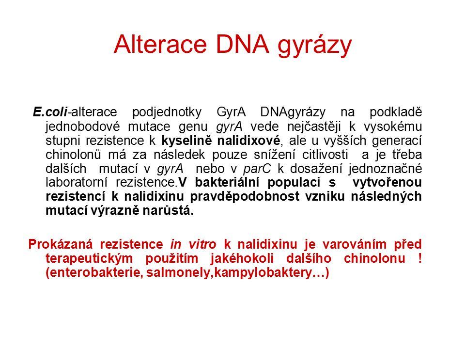 Alterace DNA gyrázy E.coli-alterace podjednotky GyrA DNAgyrázy na podkladě jednobodové mutace genu gyrA vede nejčastěji k vysokému stupni rezistence k