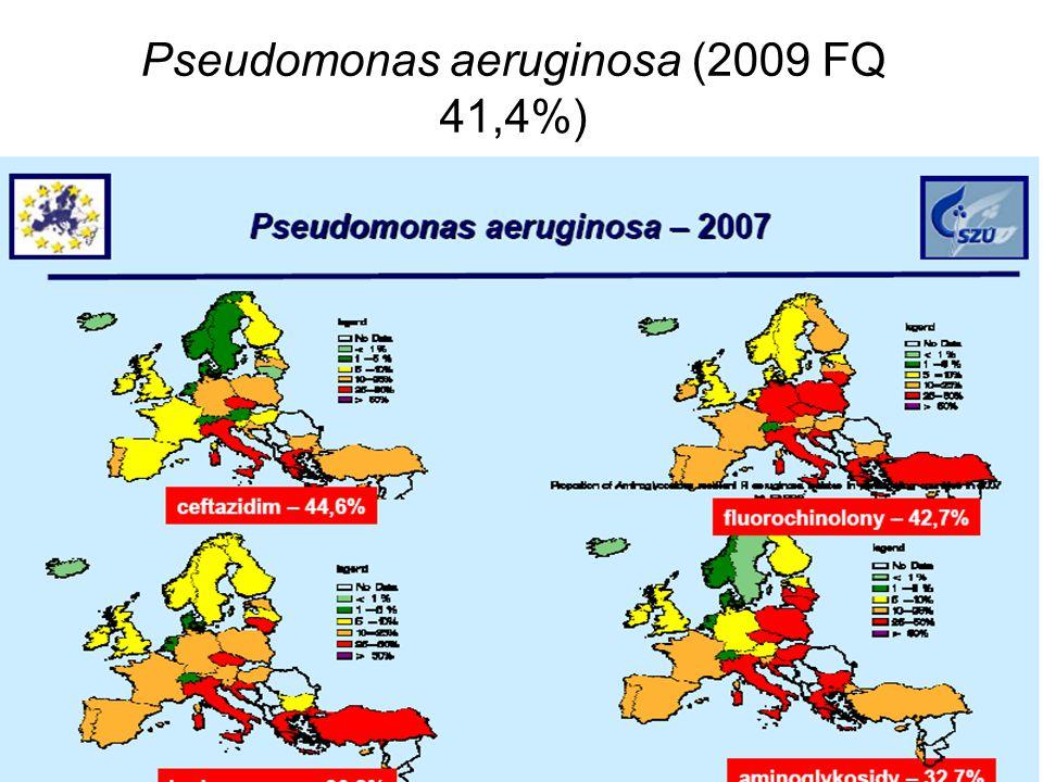 Pseudomonas aeruginosa (2009 FQ 41,4%)