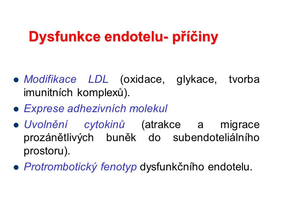 Dysfunkce endotelu- příčiny Modifikace LDL (oxidace, glykace, tvorba imunitních komplexů). Exprese adhezivních molekul Uvolnění cytokinů (atrakce a mi