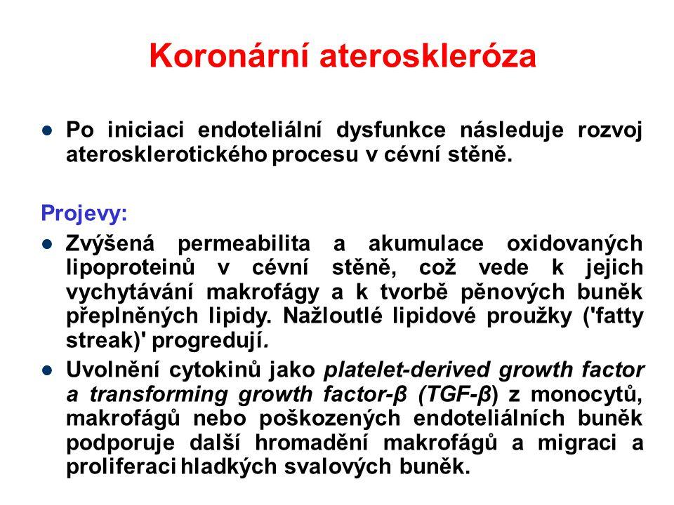 Koronární ateroskleróza Po iniciaci endoteliální dysfunkce následuje rozvoj aterosklerotického procesu v cévní stěně. Projevy: Zvýšená permeabilita a