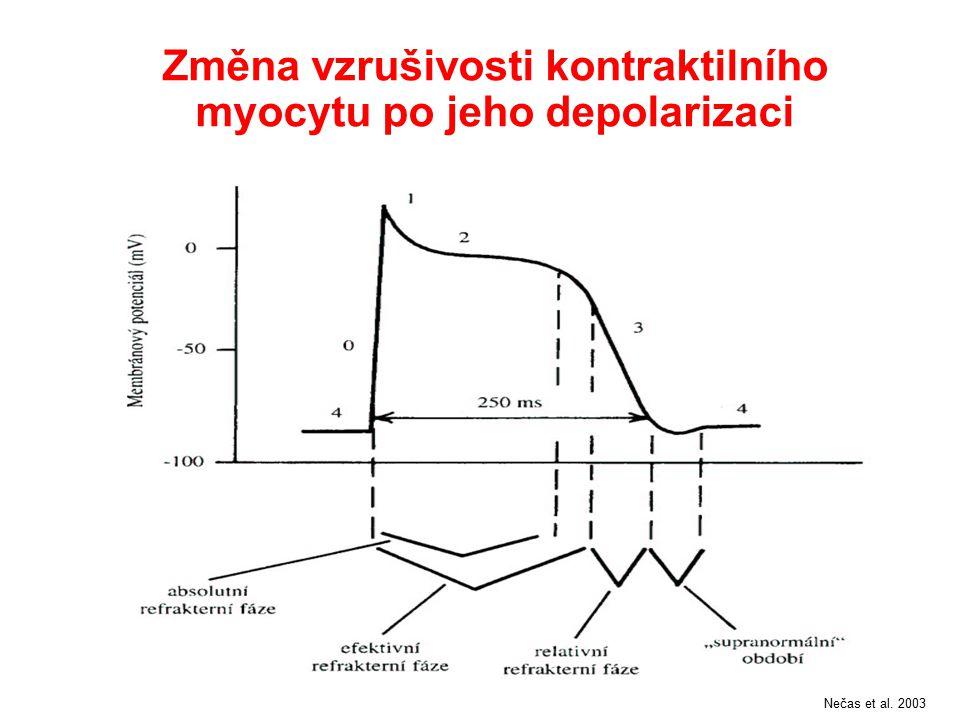Změna vzrušivosti kontraktilního myocytu po jeho depolarizaci Nečas et al. 2003