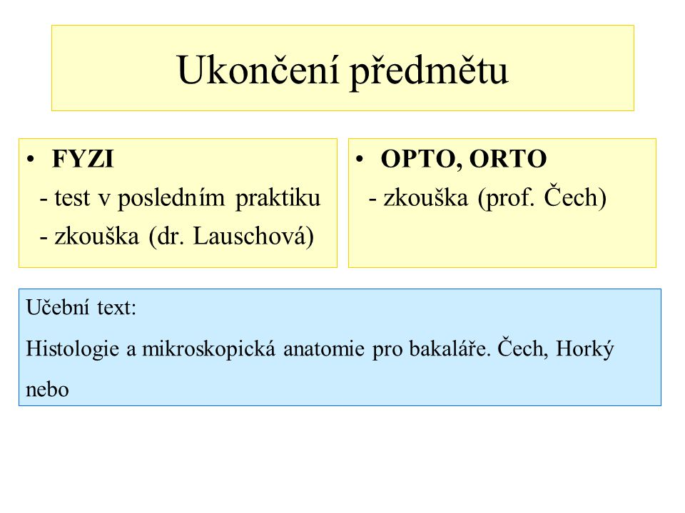 Stavba jádra Jaderný obal – karyolema Jaderná matrix – karyoplazma (nukleoplazma) Chromatin (v interfázi) / chromosomy (při dělení) Jaderný skelet Jadérko(a)