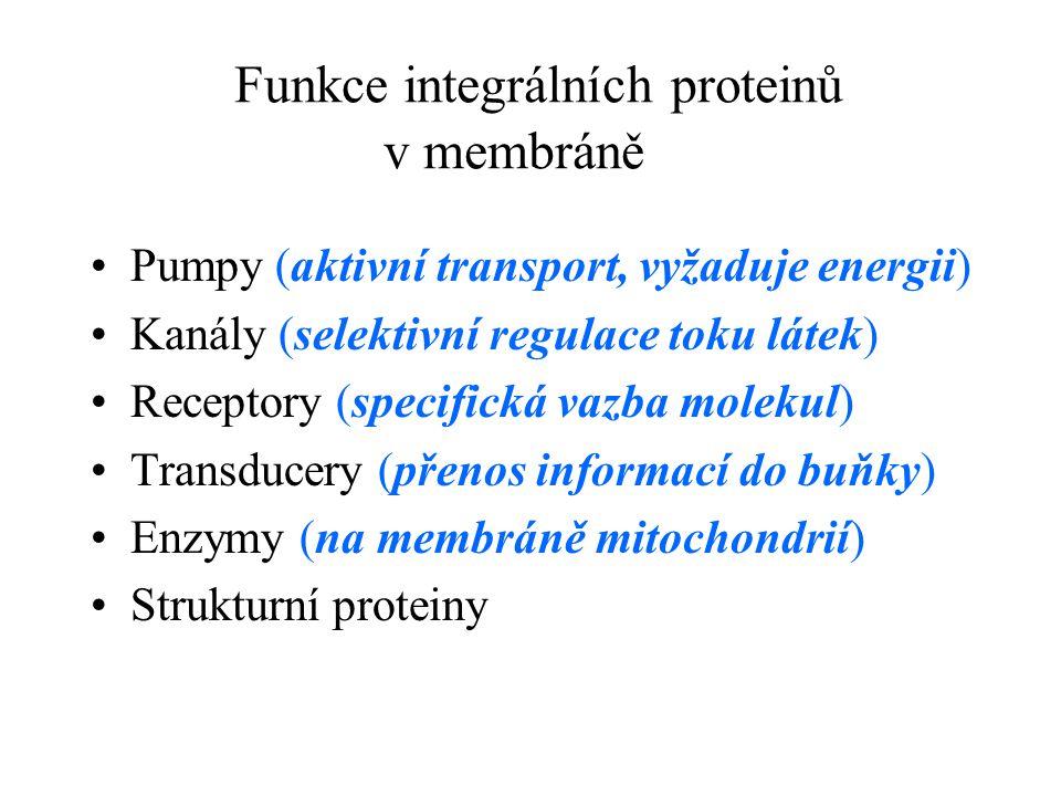 Funkce integrálních proteinů v membráně Pumpy (aktivní transport, vyžaduje energii) Kanály (selektivní regulace toku látek) Receptory (specifická vazb