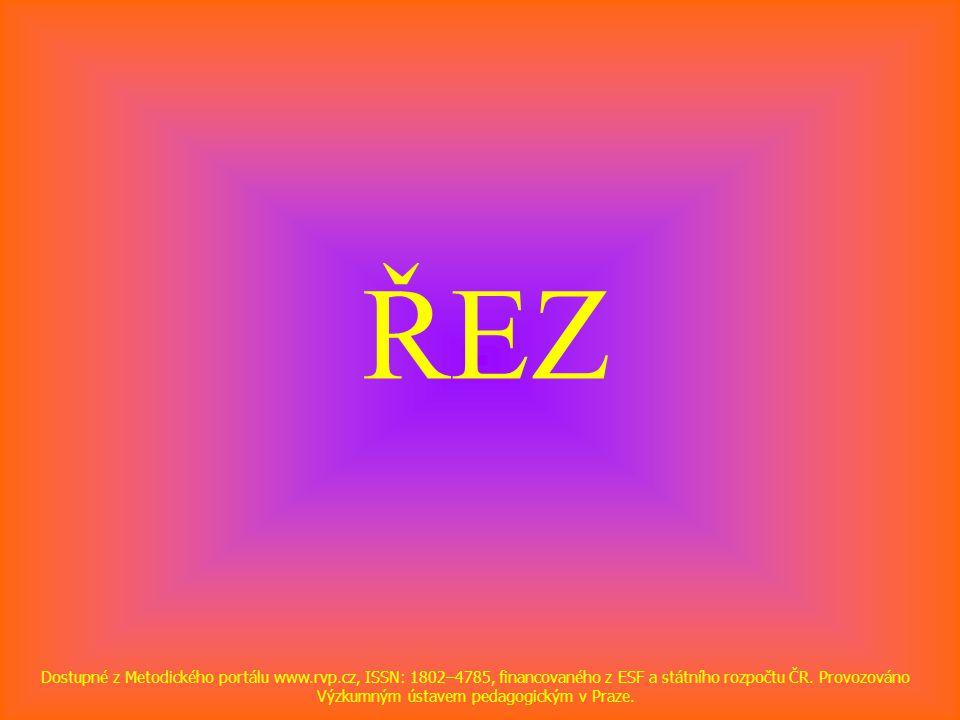ŘEZ Dostupné z Metodického portálu www.rvp.cz, ISSN: 1802–4785, financovaného z ESF a státního rozpočtu ČR. Provozováno Výzkumným ústavem pedagogickým