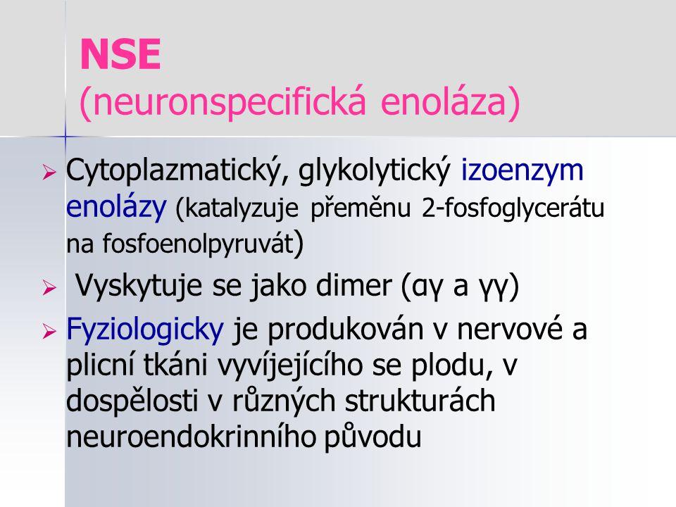 NSE (neuronspecifická enoláza)  Cytoplazmatický, glykolytický izoenzym enolázy (katalyzuje přeměnu 2-fosfoglycerátu na fosfoenolpyruvát )  Vyskytuje