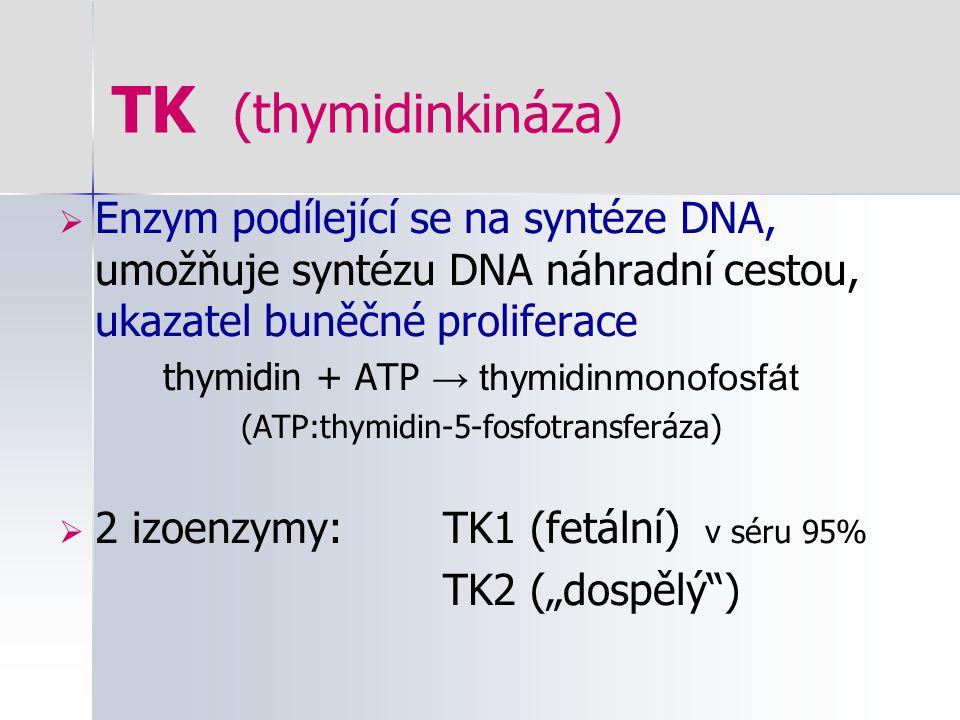 TK (thymidinkináza)  Enzym podílející se na syntéze DNA, umožňuje syntézu DNA náhradní cestou, ukazatel buněčné proliferace thymidin + ATP → thymidin