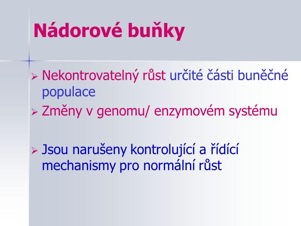 Nádorové buňky  Nekontrovatelný růst určité části buněčné populace  Změny v genomu/ enzymovém systému  Jsou narušeny kontrolující a řídící mechanis