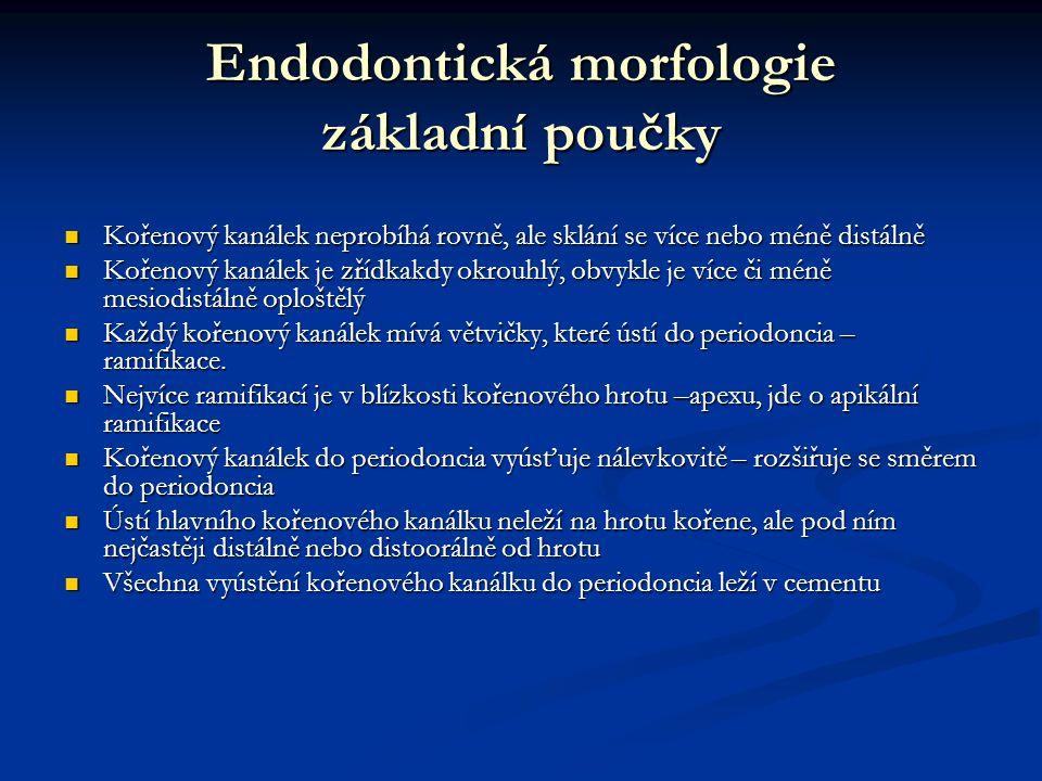 Endodontická morfologie základní poučky Kořenový kanálek neprobíhá rovně, ale sklání se více nebo méně distálně Kořenový kanálek neprobíhá rovně, ale