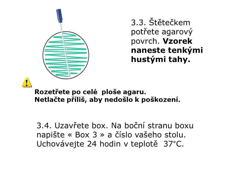 3.3. Štětečkem potřete agarový povrch. Vzorek naneste tenkými hustými tahy.