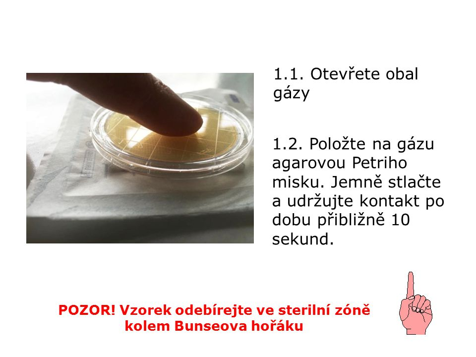 1.1. Otevřete obal gázy POZOR. Vzorek odebírejte ve sterilní zóně kolem Bunseova hořáku 1.2.