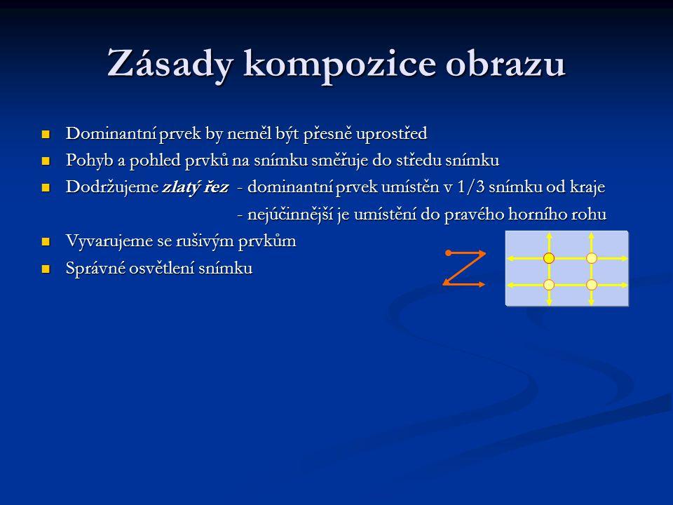 Zásady kompozice obrazu Dominantní prvek by neměl být přesně uprostřed Dominantní prvek by neměl být přesně uprostřed Pohyb a pohled prvků na snímku s