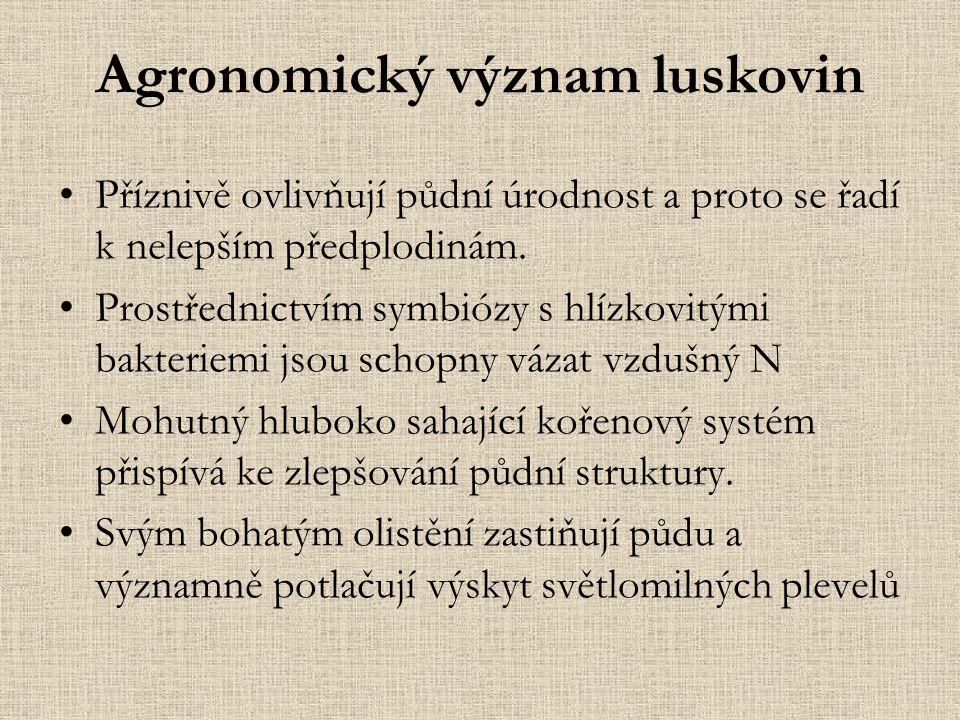 Agronomický význam luskovin Příznivě ovlivňují půdní úrodnost a proto se řadí k nelepším předplodinám.