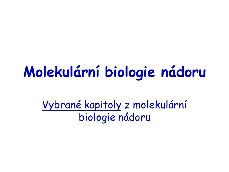 Program přednášky - 2 Apoptóza Telomery a telomeráza Angiogeneze Tvorba metastáz Epigenetika nádorů Leukémie (Dr.