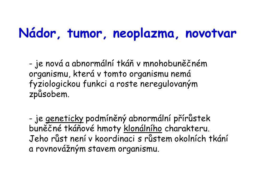 Klasifikace nádorů I: podle schopnosti infiltrovat se do jiné tkáně Benigní (nezhoubné): zůstávají v místě svého vzniku, nemigrují, neinvadují jiné tkáně.