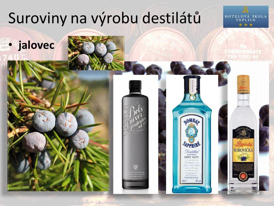 Suroviny na výrobu destilátů jalovec destiláty z jalovce: Genever Gin Borovička