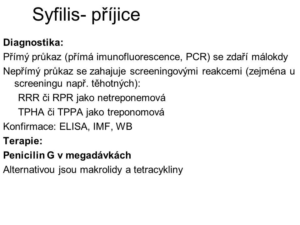 Syfilis- příjice Diagnostika: Přímý průkaz (přímá imunofluorescence, PCR) se zdaří málokdy Nepřímý průkaz se zahajuje screeningovými reakcemi (zejména