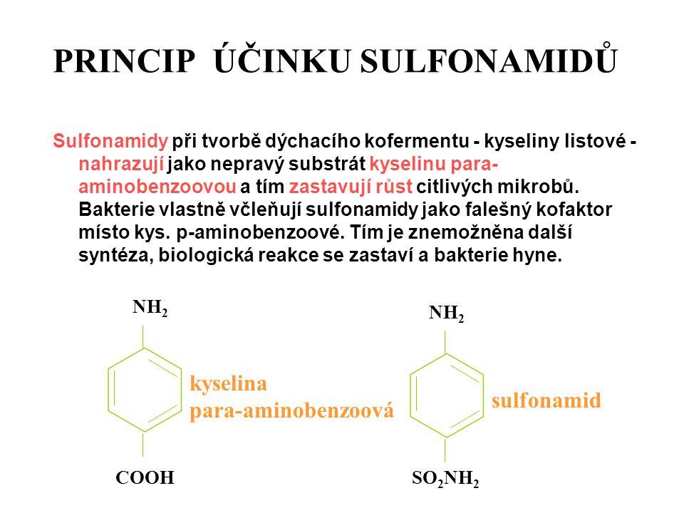 PRINCIP ÚČINKU SULFONAMIDŮ Sulfonamidy při tvorbě dýchacího kofermentu - kyseliny listové - nahrazují jako nepravý substrát kyselinu para- aminobenzoo