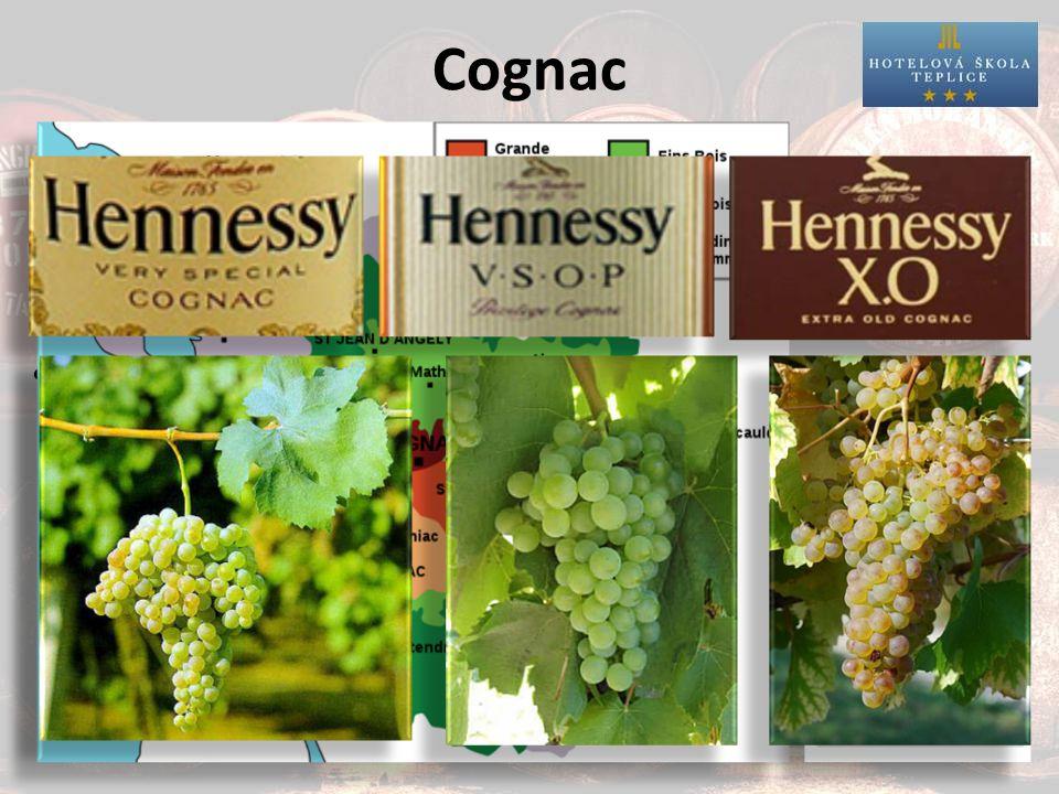 Cognac pouze z určité oblasti ve Francii pouze tři bílé odrůdy: stařený destilát: – VS (very special) = min.