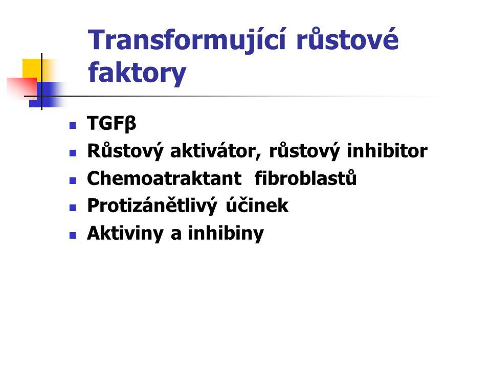 Transformující růstové faktory TGFβ Růstový aktivátor, růstový inhibitor Chemoatraktant fibroblastů Protizánětlivý účinek Aktiviny a inhibiny