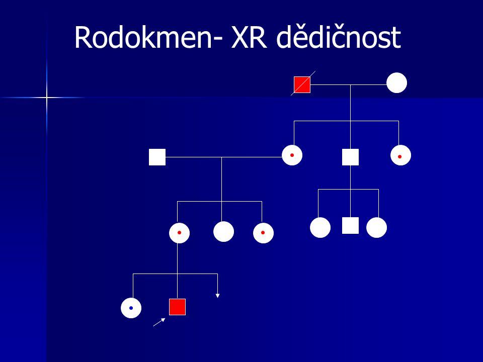Rodokmen- XR dědičnost