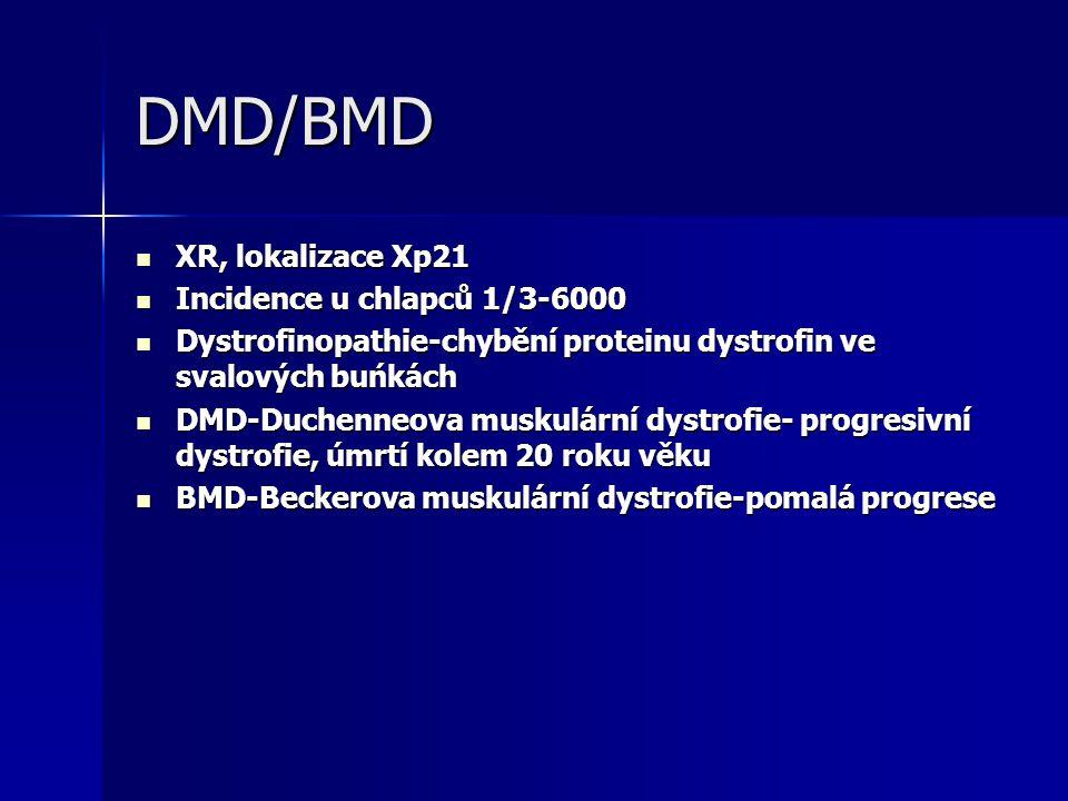 DMD/BMD XR, lokalizace Xp21 XR, lokalizace Xp21 Incidence u chlapců 1/3-6000 Incidence u chlapců 1/3-6000 Dystrofinopathie-chybění proteinu dystrofin ve svalových buńkách Dystrofinopathie-chybění proteinu dystrofin ve svalových buńkách DMD-Duchenneova muskulární dystrofie- progresivní dystrofie, úmrtí kolem 20 roku věku DMD-Duchenneova muskulární dystrofie- progresivní dystrofie, úmrtí kolem 20 roku věku BMD-Beckerova muskulární dystrofie-pomalá progrese BMD-Beckerova muskulární dystrofie-pomalá progrese
