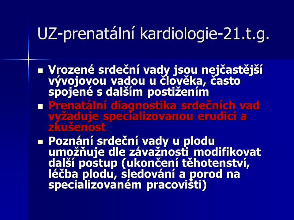 UZ-prenatální kardiologie-21.t.g.