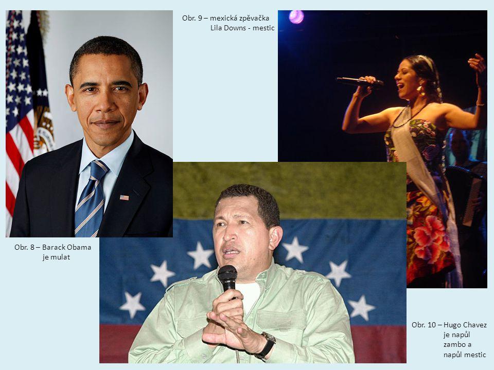 Obr.8 – Barack Obama je mulat Obr. 10 – Hugo Chavez je napůl zambo a napůl mestic Obr.