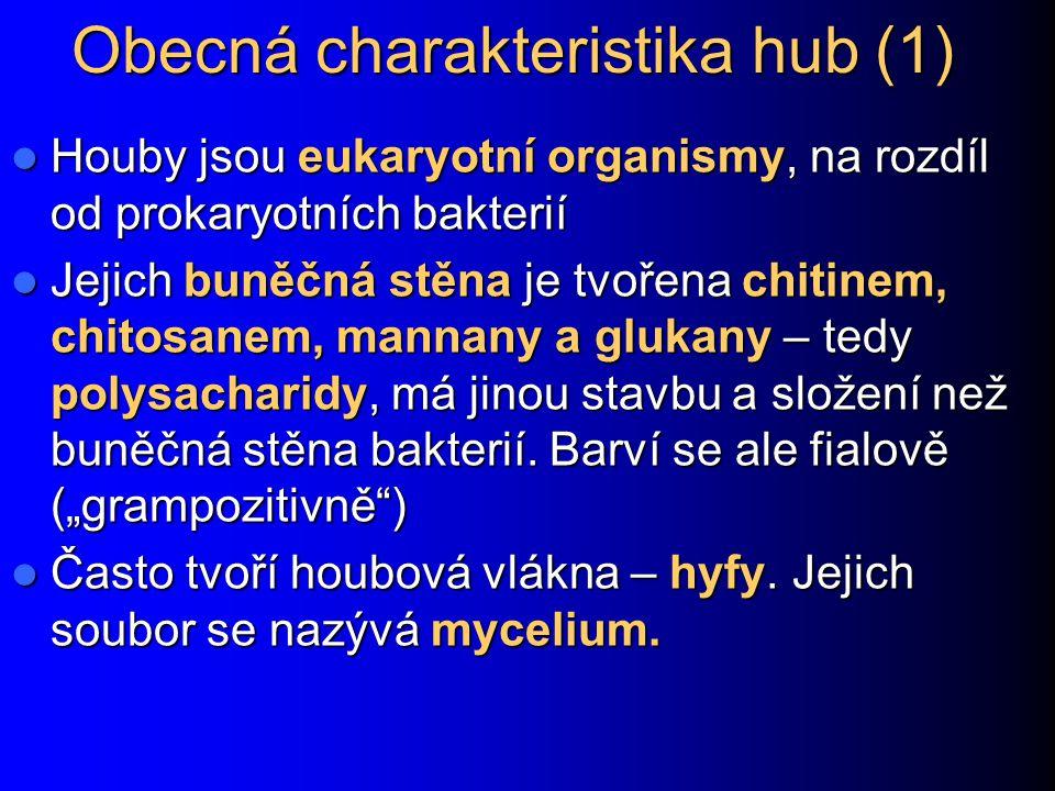 Obecná charakteristika hub (1) Houby jsou eukaryotní organismy, na rozdíl od prokaryotních bakterií Houby jsou eukaryotní organismy, na rozdíl od prok