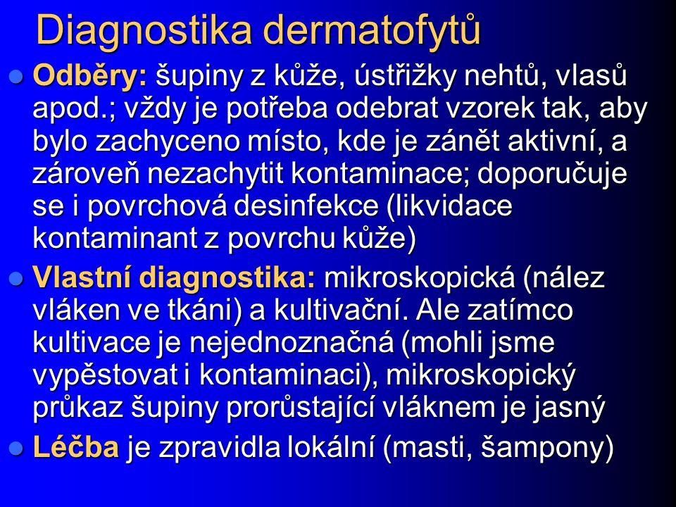 Diagnostika dermatofytů Odběry: šupiny z kůže, ústřižky nehtů, vlasů apod.; vždy je potřeba odebrat vzorek tak, aby bylo zachyceno místo, kde je zánět