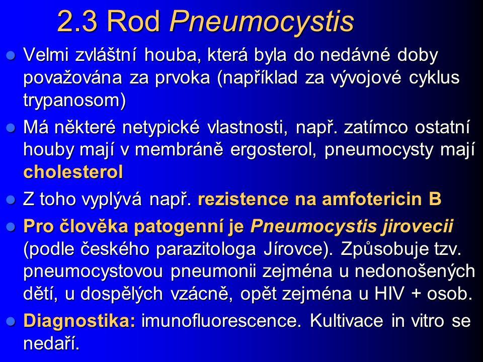 2.3 Rod Pneumocystis Velmi zvláštní houba, která byla do nedávné doby považována za prvoka (například za vývojové cyklus trypanosom) Velmi zvláštní ho