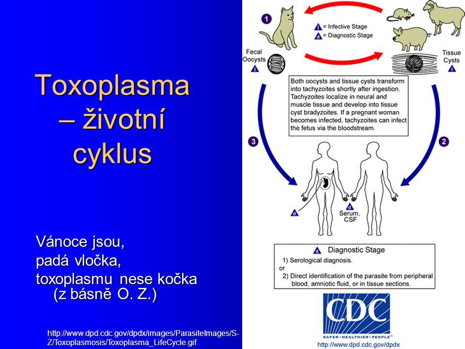Toxoplasma – životní cyklus http://www.dpd.cdc.gov/dpdx/images/ParasiteImages/S- Z/Toxoplasmosis/Toxoplasma_LifeCycle.gif Vánoce jsou, padá vločka, to
